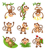 Playful monkeys character  set. Chinese zodiac 2016 New Year. Animal ape, wildlife funny, vector illustration