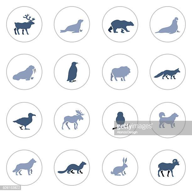 Polar Animals Icon Set