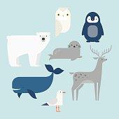 Vector set Arctic and Antarctic animals. Penguin, polar bear, seal, reindeer, whale, snowy owl, albatross. Set of polar animals. Flat style character. Vector illustration