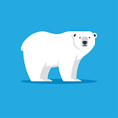 Polar bear vector illustration in flat style. North Pole, Arctic animal icon. Winter, zoo symbol.