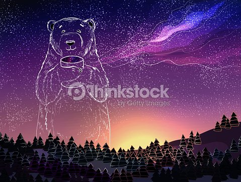 polar white bear on night sky background christmas and new year theme vector
