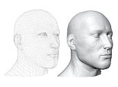 Realistic male head. Polygonal skin. Isolated. 3D. EPS 8. Vector illustration.