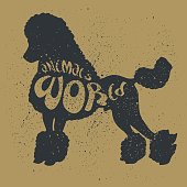 "Poodle Dog. Grunge Style with Ink splashes texture. Black Silhouette of the Dog with lettering ""Animals World"". Original Vector Text. Hand Drawn illustration on Animals theme."