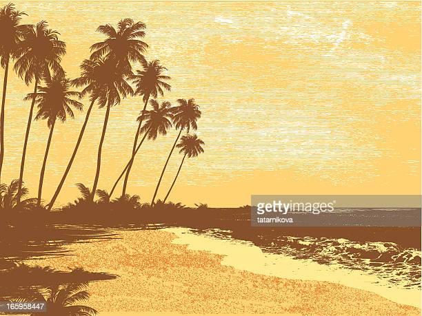 Postkarte, Palmen, Meer
