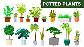 Potted Plants Set Vector. Indoor Home, Office Modern Style Houseplants. Green Color Plants In Pot. Various. Floral Interior Icon. Decoration Design Element. Isolated Illustration