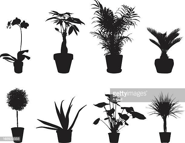 Potted Plants Vector Silhouette