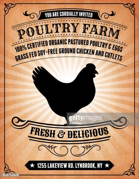 Poultry Farm on royalty free vector Background Poster