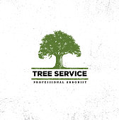 Professional Arborist Tree Care Service Organic Eco Sign Concept. Landscaping Design Raw Vector Illustration On Distressed Wall Background
