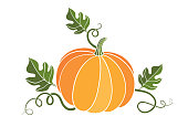 pumpkin. harvesting. natural food. colored vector illustration on white background