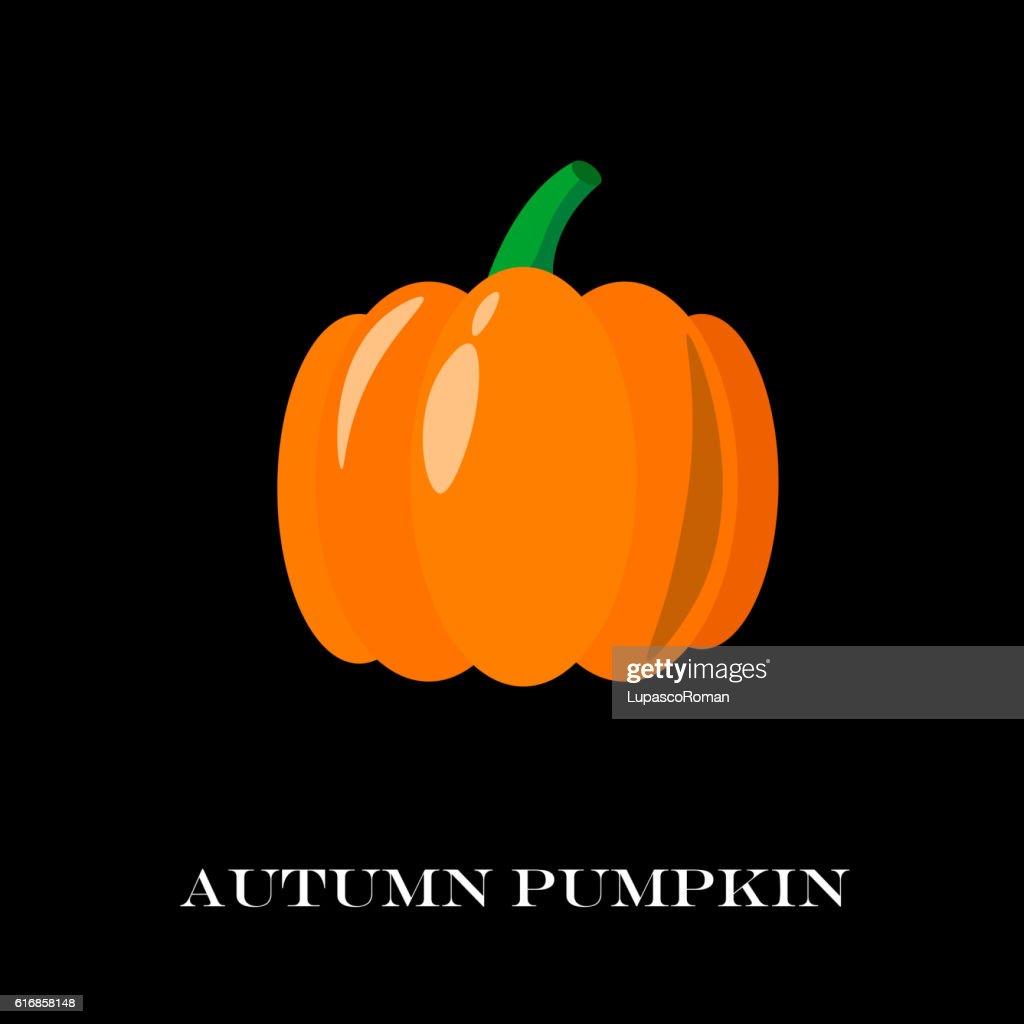 Pumpkin Isolated. Flat and Cartoon Design Style. Vector Illustration : Vector Art