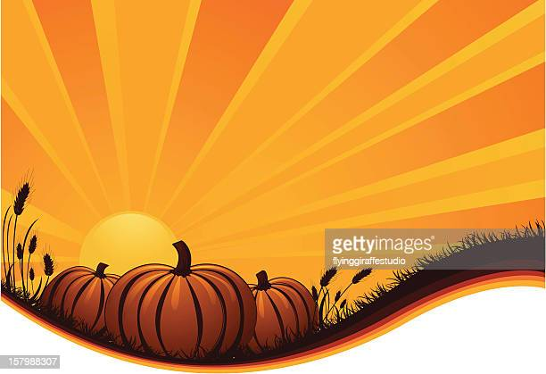 Pumpkin Sunrise/Sunset