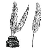 Vector set of retro inkwell and quill feathers at engraving style.