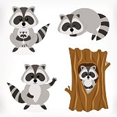 Raccoon set with standing raccoon, raccoon with baby, sleeping raccoon and raccoon inside tree. Vector cartoon illustration.