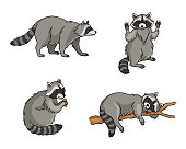Racoons in different poses - vector illustration. EPS8