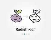 Radish vector icon