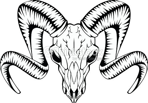 Bull Skull Drawings furthermore Search in addition Deer Skull Silhouette moreover Angry Bull Running 29360229 furthermore 177568852. on buffalo head clip art