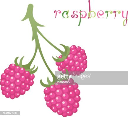 Raspberry Branch : Vector Art