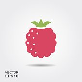 Raspberry flat icon with shadow. Vector Illustration
