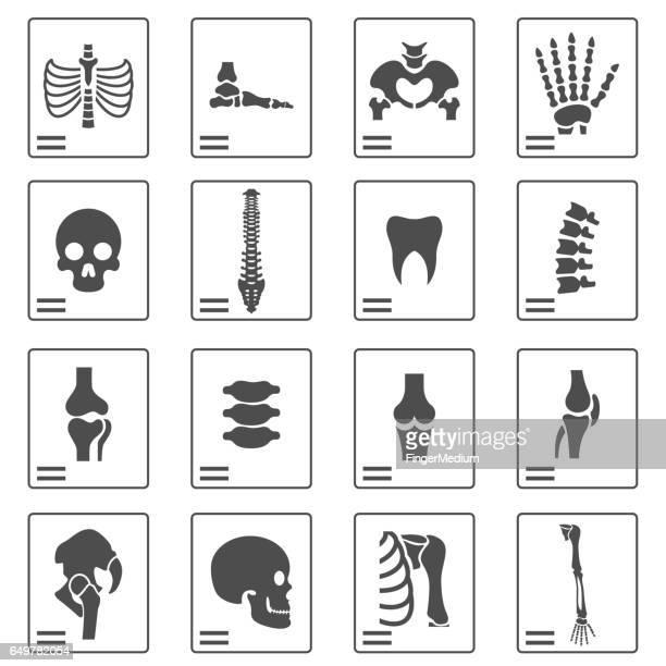 X ray ikoner