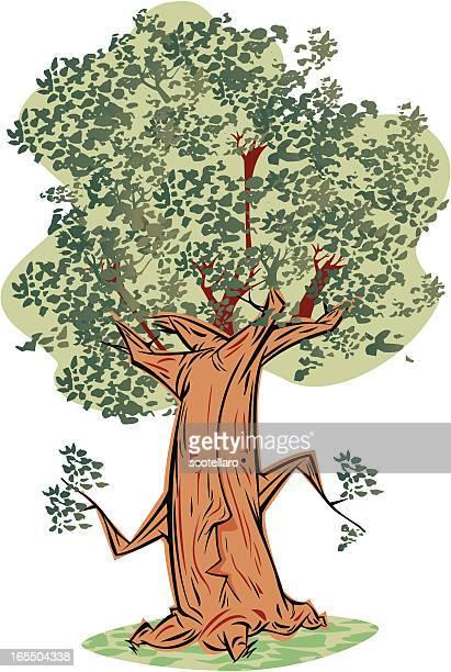 árbol parlante