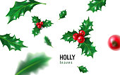 Realistic holly, ilex with berry and leaves, mistletoe set. Christmas, new year holiday celebration symbol, decorations. 3d realistic vector illustration isolated on white background.