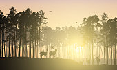 Realistic illustration of mountain landscape with coniferous forest. Deer herd grazes under yellow sky with flying bird and sunrise with sunshine - vector