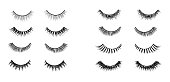 Realistic lashes set. Lashes extensions vector illustration.