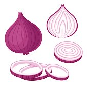 Red onion set. Cut in half, slice and onion rings. Isolated vector illustration.