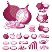 Red Onion Isolated Vector