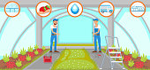 Harvesting in Greenhouse Concept. Natural Resource. Growing Plants. Watering and Irrigation System. Crop Delivery. Fruit Picking Work. Farm Business Concept. Vector Flat Illustration.
