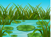 illustration of river scene and water lily in a beautiful nature