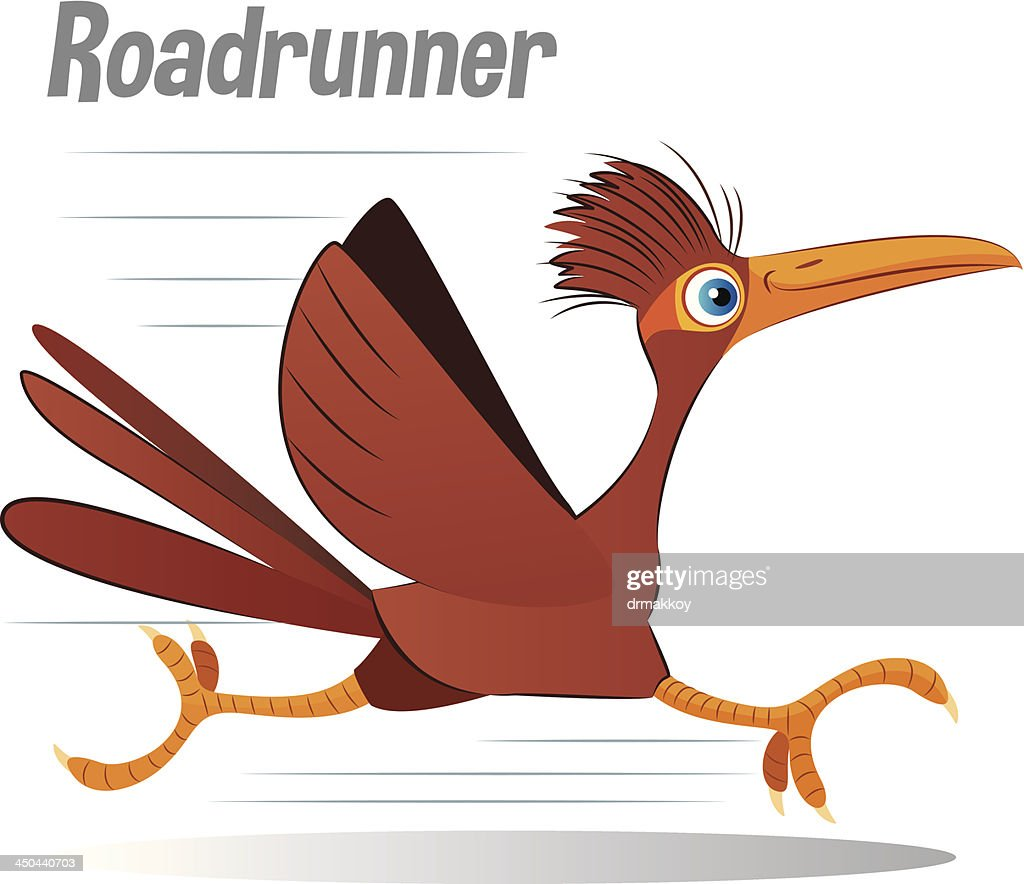 Roadrunner : Vector Art