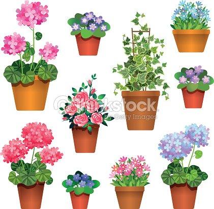 room flowers : stock vector