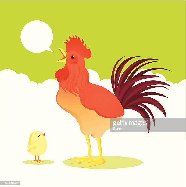 rooster and chick