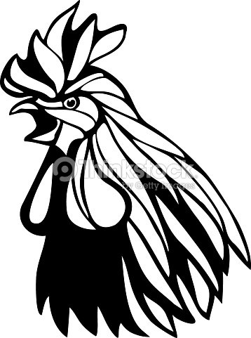 Rooster Head Outline Illustration stock vector | Thinkstock