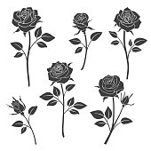Rose buds vector silhouettes. Flowers design elements. Monochrome rose tattoo illustration
