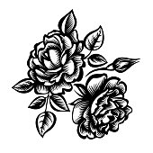 Vector decorative black-and-white bouquet of roses, stylized peony flowers