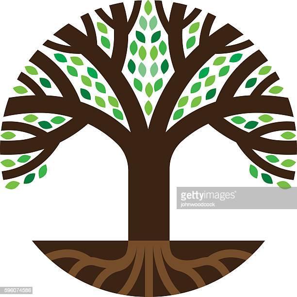 Round tree roots illustration