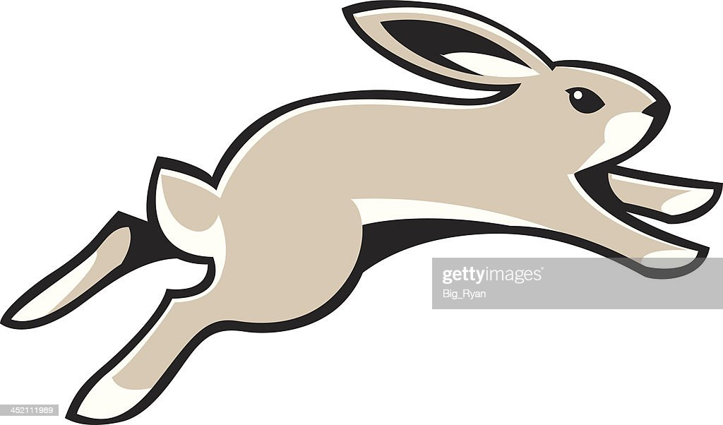 Running Rabbit Vector ...
