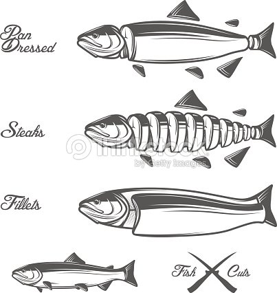salmon cuts diagram - pan dressed, fillets and steaks