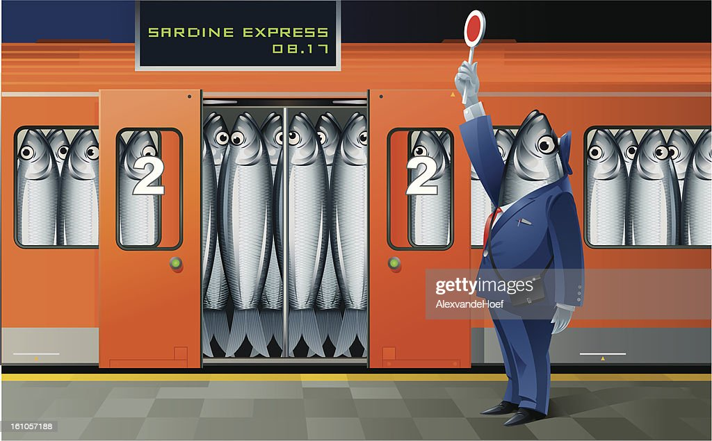Sardine Express : Vector Art