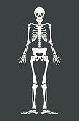Scary skeleton. Vector flat cartoon illustration