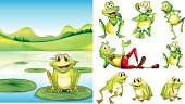 Scene with frog in pond and other frog characters illustration