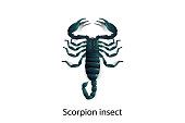 Scorpions vector on white background,Isolated,Objects.