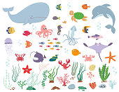 Sea animals and water plants. Cartoon vector illustration on a white background