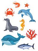 Sea animals isolated on white background. Vector illustration.