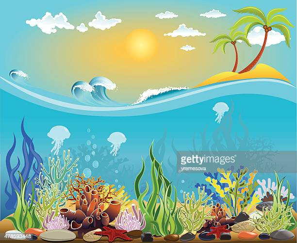 Sea bottom illustration