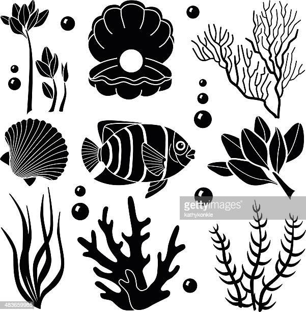 sea creatures design elements