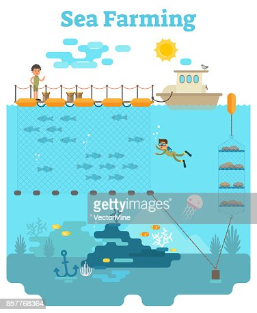 Sea Farming illustration : stock vector