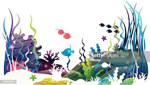sea floor world